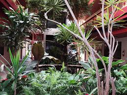 Interior landscaping office House Roomsketcher Interior Landscaping Design Maintenance By Green Goddess Design