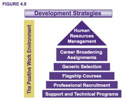 archived career development in the federal public service  figure 4 9 development strategies