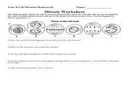 Handsome Seventh Grade Math Worksheets Equation For 4Th 7Th likewise Area Of  plex Figures Worksheet   Phoenixpayday together with Math Worksheets  Fractions  – Michael Jordan Was Cut From His High in addition Addition Math Worksheets For Kindergarten Worksheet Works For Kids moreover Pre K Math Worksheets – Matching 6 To 10 – Guillermotull besides  also Did You Hear About Math Worksheet Algebra 2 – Guillermotull furthermore  additionally Pictures Perpendicular And Angle Bisectors Worksheet additionally Phases Of Meiosis Worksheet   Calleveryonedaveday additionally Asymptotes Worksheet   Calleveryonedaveday. on math worksheets guillermotull com