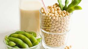 Kandungan Kacang Kedelai