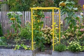 3 smaller scale diy seattle gardens
