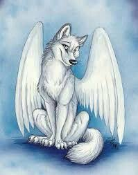 white wolf with wings drawing. Wolf With Wings Clothes Google Search Wolfs Pinterest To White Drawing
