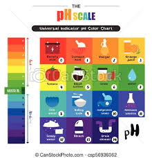 Acid Alkaline Chart The Ph Scale Universal Indicator Ph Color Chart Diagram