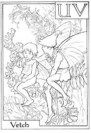 Small Picture Download and Print letter v for vetch flower fairy coloring page