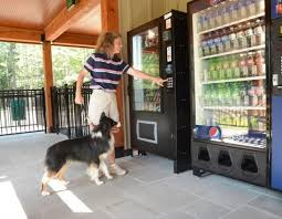 Dog Biscuit Vending Machine Classy Could This Be The Best RV Park For Dogs And Their Owners