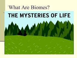 What Are Biomes What Are Biomes Ppt Video Online Download