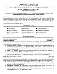 Executive Resume Template 2015