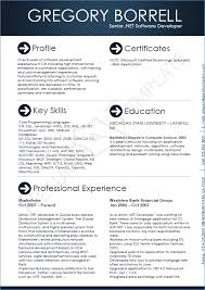 Sample Resume Of Software Developer Resume Layout Com