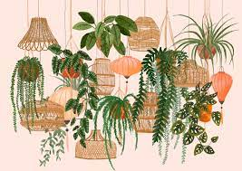 Plant painting, Illustration wall art ...