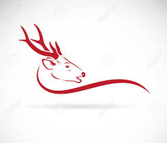 Vector Of A Deer Head On A White Background Wild Animals