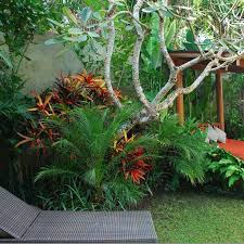 Small Picture Best 25 Bali garden ideas on Pinterest Balinese garden