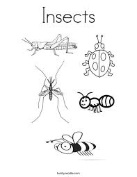Small Picture Insects Coloring Page Twisty Noodle