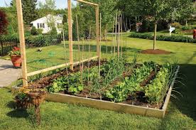 Small Picture Make Small Vegetable Garden Design Look Bigger