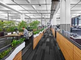 Biophilic Design In The Workplace A Study On The Effects Of Plant Focused Biophilic Design
