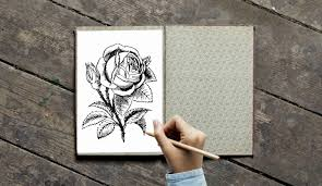 Free Images Coloring Book For Adults Colored Pencils Coloring