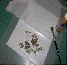 Wax Paper Flower Antique Any Occasion Pressed Flower Card Favecrafts Com