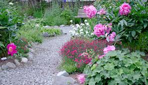 the displays of peonies and himalayan blue poppies in this garden are dramatic late june through july