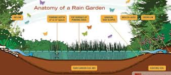 Small Picture Rain Gardens Demystified Why Including One in Your Landscape