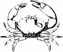 Small Picture Life Crab Cartoon Coloring Page Wecoloringpage Spiny King