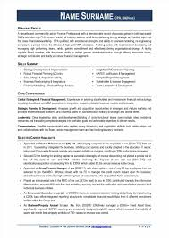 Fair Resume Of Finance Manager Sample With Financial Planning And