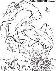 Small Picture Manta Ray Coloring Page Manta ray Worksheets and Ocean