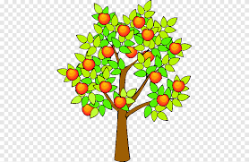 fruit tree png images pngegg
