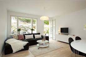 Large Living Room Window Ideas