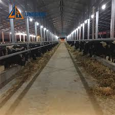 Goat Shed Design And Pictures Hot Item Prefabricated Prefab Cattle Cow Goat Dairy Farming Shed Design