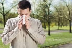 Cold Vs Allergy Symptoms Chart Sniffle Detective 5 Ways To Tell Colds From Allergies