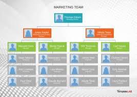 033 Template Ideas Organizational Chart Free Organization