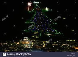 Mount Ingino Christmas Tree