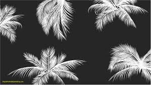 palm trees tumblr black and white palm tree tumblr black and white lovely get your white r29 and