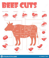 Cow Chart Steak Vector Beef Cuts Chart Stock Vector Illustration Of Color