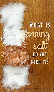 Morton Salt Conversion Chart Www Imghulk Com