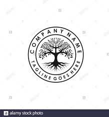 Banyan Tree Logo Design Tree Of Life Stamp Seal Emblem Oak Banyan Logo Design