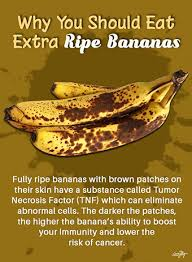 Banana Ripeness Chart Cancer And Ripe Bananas How Bogus Claims Can Harm Your