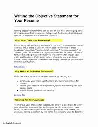 Best Example Of A Resume Classy Simple Objective For Resume Best 48 New Resume Objective Example