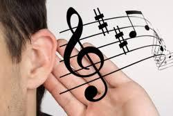 Абсолютный слух факты и исследования Моя Мечта Международная  Абсолютный слух