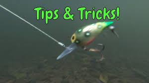 5 Tips For Fishing Brads Wigglers For Salmon Steelhead