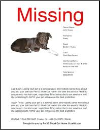 Missing Cat Poster Template Gallery Of Lost Dog Posters Luxury Pet Flyers Missing Cat Poster