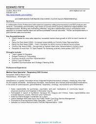 Executive Summary Templates Great Strategic Plan Executive Summary Sample Management Summary 10
