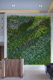Living green walls infuse the dull expanse of interiors with life-renewing  greenery.