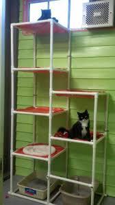 austin pets alive cat trees for easy diy tree design 17