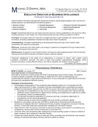 Resume Examples Business Intelligence Augustais