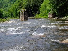 Loyalsock Creek Hatch Chart Clean Water Institute Reports Clean Water Institute