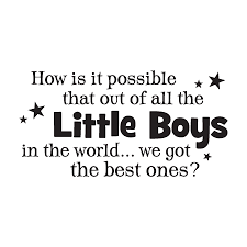 Little Boy Quotes Simple We Got The Best Little Boys Wall Quotes™ Decal WallQuotes