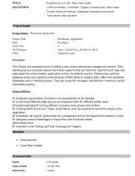 Salesforce Administrator Resume Interesting Salesforce Administrator Resume Examples Kenicandlecomfortzone