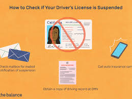 You may obtain licensing assistance from the licensing bureau of the california department of insurance. Is Your License Suspended Here S How You Find Out