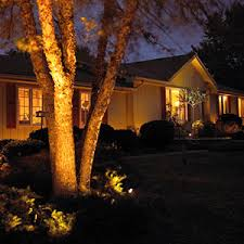 landscape lighting trees. when it comes to trees or large standalone shrubs plants itu0027s easy narrow down your options for landscaping lights thatu0027s because the type of landscape lighting g