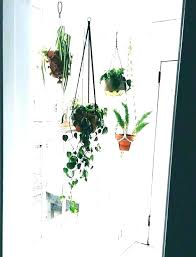 window plant shelves glass for plants kitchen shelf full size ledge diy hanging window plant shelves